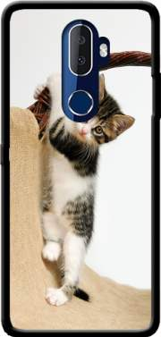 Baby cat, cute kitten climbing Case for Alcatel 3V