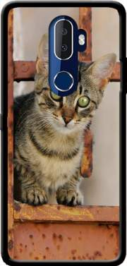 Cute kitten on a rusty iron door  Case for Alcatel 3V