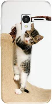 Baby cat, cute kitten climbing Case for Alcatel Pixi 3 4.5 3G 4027X