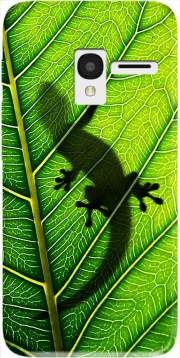 Lizard Case for Alcatel Pixi 3 4.5 3G 4027X