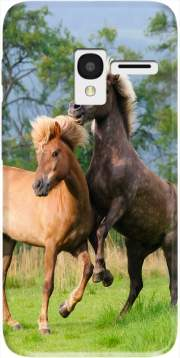 Two Icelandic horses playing, rearing and frolic around in a meadow Case for Alcatel Pixi 3 4.5 3G 4027X