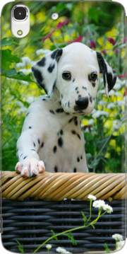 Cute Dalmatian puppy in a basket  Case for Huawei Honor 4A