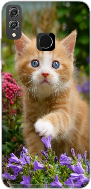 Cute ginger kitten in a flowery garden, lovely and enchanting cat Case for Honor 8x