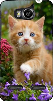 Cute ginger kitten in a flowery garden, lovely and enchanting cat Case for Huawei Ascend G600 u8950