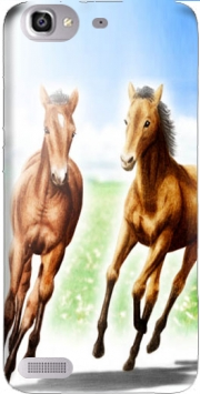 Horse And Mare Case for Huawei G8 Mini GR3 / Enjoy 5S