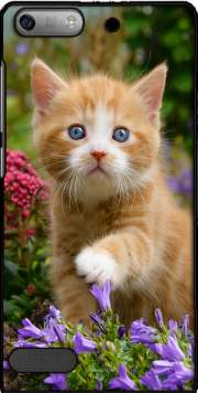 Cute ginger kitten in a flowery garden, lovely and enchanting cat Case for Huawei Ascend P6 Mini