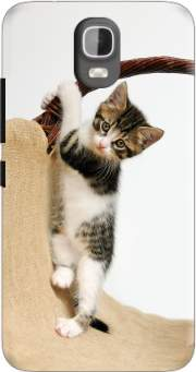 Baby cat, cute kitten climbing Case for Huawei Y3 Y360