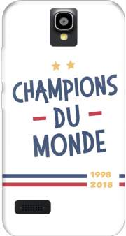 Champion du monde 2018 Supporter France Case for Huawei Y5 Y560