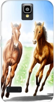 Horse And Mare Case for Huawei Y5 Y560