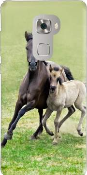 Horses, wild Duelmener ponies, mare and foal Case for Huawei Mate S