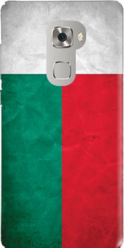 Madagascar Case for Huawei Mate S