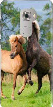 Two Icelandic horses playing, rearing and frolic around in a meadow Case for Huawei Mate S