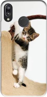 Baby cat, cute kitten climbing Case for Huawei P20 Lite