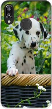 Cute Dalmatian puppy in a basket  Case for Huawei P20 Lite