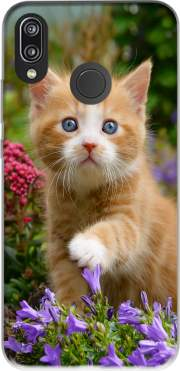 Cute ginger kitten in a flowery garden, lovely and enchanting cat for Huawei P20 Lite / Nova 3e