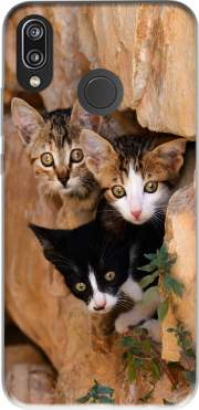 Three cute kittens in a wall hole Case for Huawei P20 Lite
