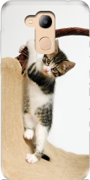 Baby cat, cute kitten climbing Case for Honor 6c Pro / Huawei V9 Play