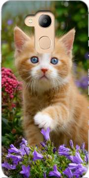 Cute ginger kitten in a flowery garden, lovely and enchanting cat Case for Honor 6c Pro / Huawei V9 Play