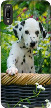 Cute Dalmatian puppy in a basket  Case for Huawei Y6 2019