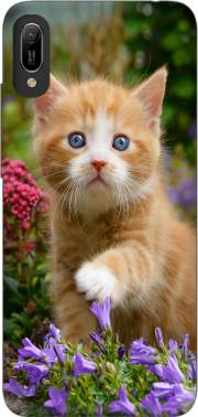 Cute ginger kitten in a flowery garden, lovely and enchanting cat Case for Huawei Y6 2019