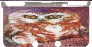 abstract cute owl Case for New Nintendo 3DS