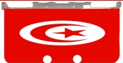 Flag of Tunisia Case for New Nintendo 3DS
