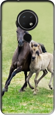 Horses, wild Duelmener ponies, mare and foal Case for Nokia 6.2