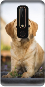 Labrador Dog Nokia 6.1 Case