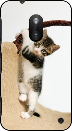 Case Baby cat, cute kitten climbing for Nokia Lumia 620