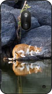 Cat Reflection in Pond Water Nokia Lumia 620 Case