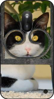 Cat with spectacles frame, she looks through a wrought iron fence Case for Nokia Lumia 620