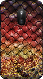 Drogon Egg Nokia Lumia 620 Case