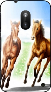 Horse And Mare Case for Nokia Lumia 620