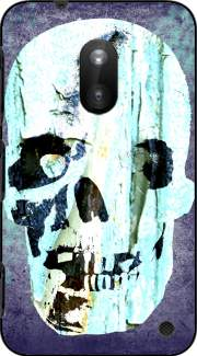 Vintage Blue Skull Case for Nokia Lumia 620