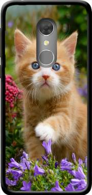 Cute ginger kitten in a flowery garden, lovely and enchanting cat Case for Orange Dive 73