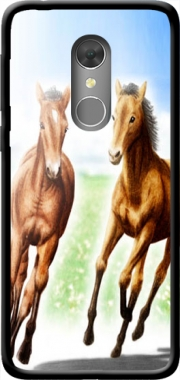 Horse And Mare Case for Orange Dive 73