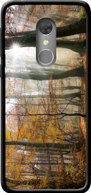 Sun rays in a mystic misty forest Case for Orange Dive 73