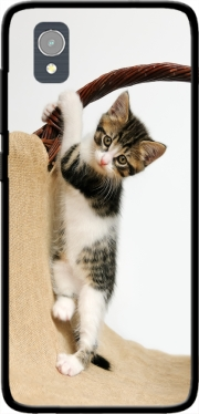 Baby cat, cute kitten climbing Case for Orange Rise 54 / Alcatel 1
