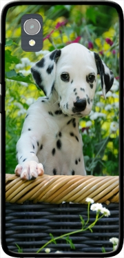 Cute Dalmatian puppy in a basket  Case for Orange Rise 54 / Alcatel 1