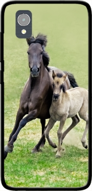 Horses, wild Duelmener ponies, mare and foal Case for Orange Rise 54 / Alcatel 1
