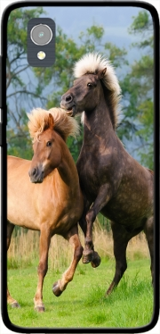 Two Icelandic horses playing, rearing and frolic around in a meadow Case for Orange Rise 54 / Alcatel 1