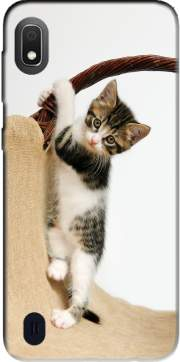 Baby cat, cute kitten climbing Case for Samsung Galaxy A10