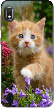Cute ginger kitten in a flowery garden, lovely and enchanting cat Case for Samsung Galaxy A10