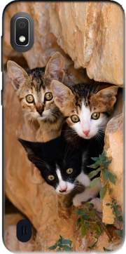 Three cute kittens in a wall hole Case for Samsung Galaxy A10