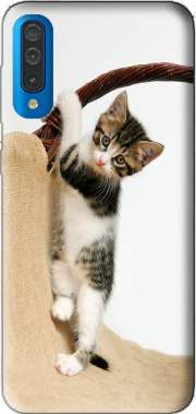 Baby cat, cute kitten climbing Case for Samsung Galaxy A50
