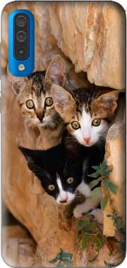 Three cute kittens in a wall hole for Samsung Galaxy A50