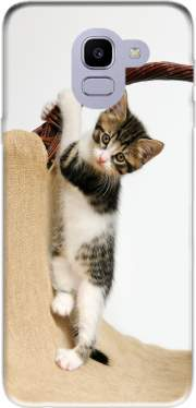 Baby cat, cute kitten climbing for Samsung Galaxy J6 2018