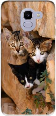 Three cute kittens in a wall hole Case for Samsung Galaxy J6 2018