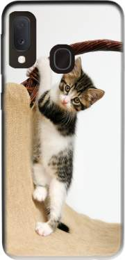 Baby cat, cute kitten climbing Case for Samsung Galaxy A20E