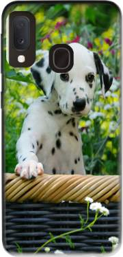 Cute Dalmatian puppy in a basket  Case for Samsung Galaxy A20E